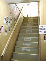 にゃんこかふぇ_ねこCOちゃ_階段