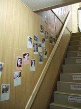 にゃんこかふぇ_ねこCOちゃ_階段の写真