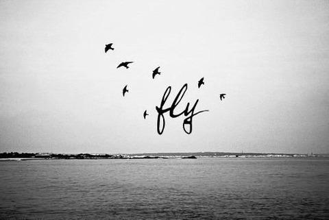 flyaway5