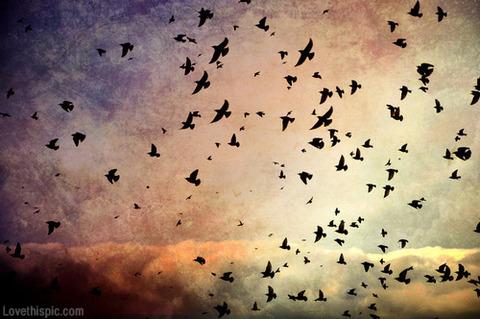 flyaway4