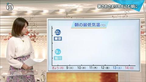 minagawa18100820