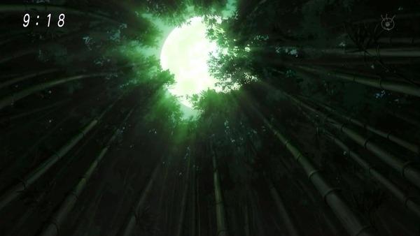 「ゲゲゲの鬼太郎」6期 45話感想 (13)