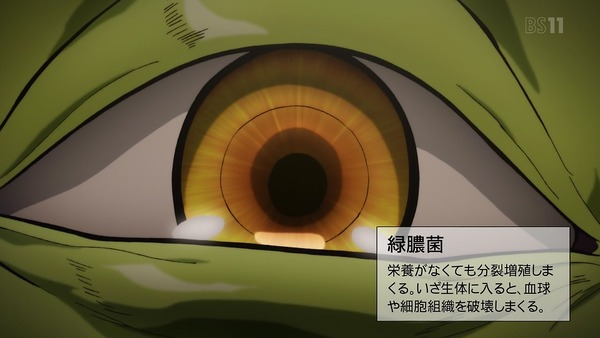 「はたらく細胞」6話感想 (18)