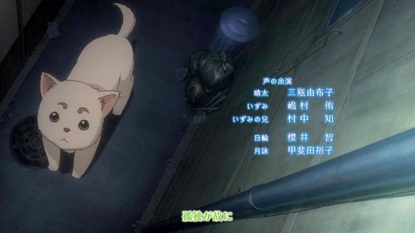 銀魂 (47)