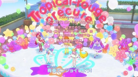 「トロピカル~ジュ!プリキュア」17話感想 (103)
