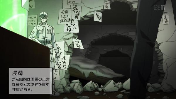 「はたらく細胞」7話感想 (18)