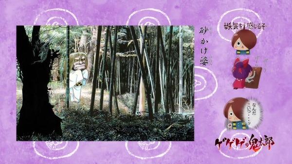 「ゲゲゲの鬼太郎」6期 62話感想 (30)