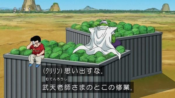「ドラゴンボール超」49話感想 (23)