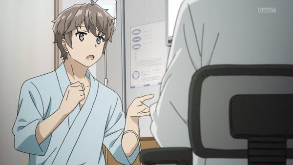 「青春ブタ野郎」12話感想 (24)