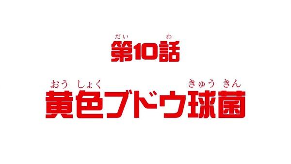 「はたらく細胞」9話感想 (48)