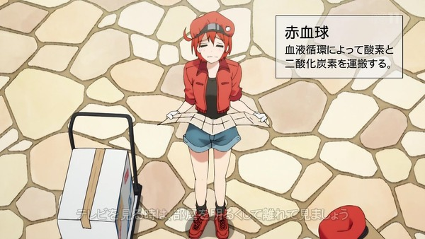 「はたらく細胞」6話感想 (47)
