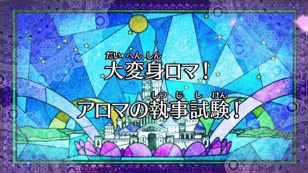 GO!プリンセスプリキュア (22)
