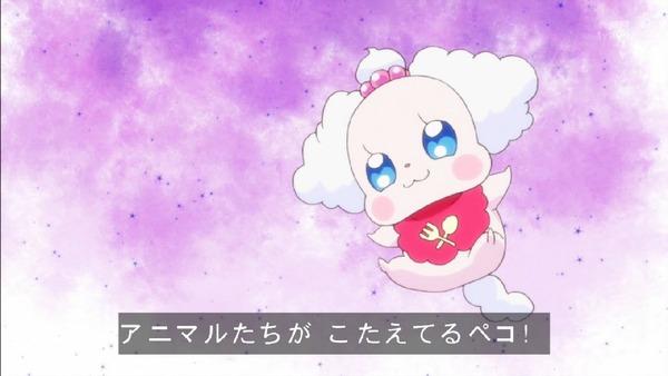 「キラキラ☆プリキュアアラモード」33話 (45)
