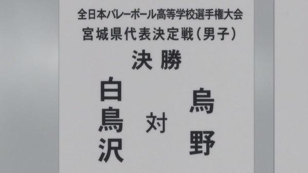 「ハイキュー!! 烏野高校VS白鳥沢学園高校」 (17)