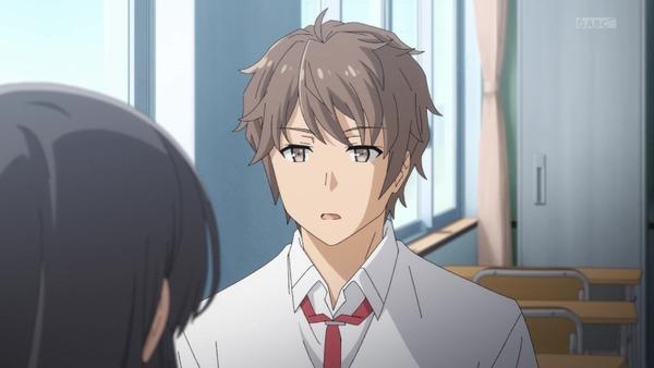 「青春ブタ野郎はバニーガール先輩の夢を見ない」4話 (13)