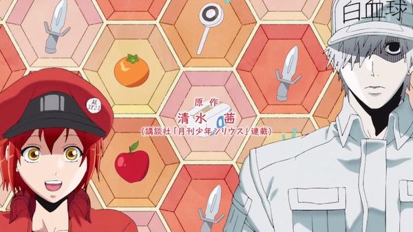 「はたらく細胞」4話感想 (2)