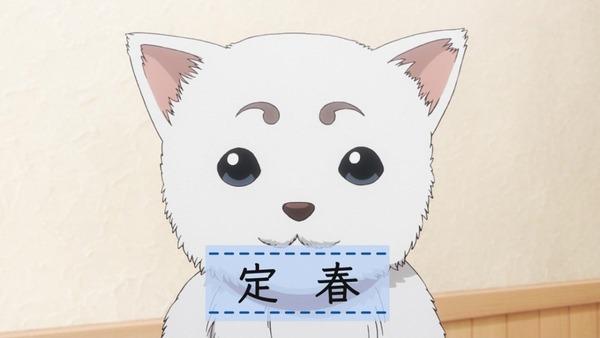 銀魂゜ (42)