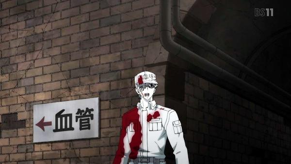 「はたらく細胞」13話(最終回)感想 (2)