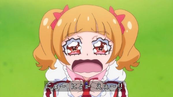 「HUGっと!プリキュア」40話感想 (63)