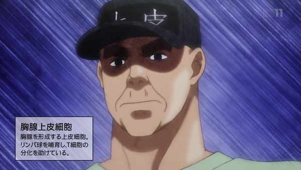 「はたらく細胞」9話感想 (15)
