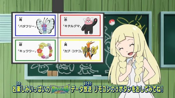 「ポケットモンスター サン&ムーン」 (3)