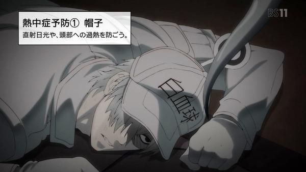 「はたらく細胞」11話感想 (29)