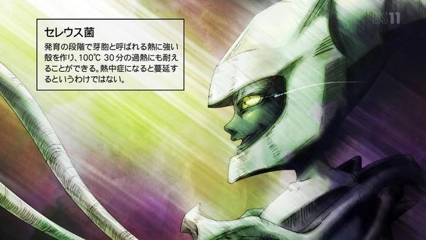 「はたらく細胞」11話感想 (31)