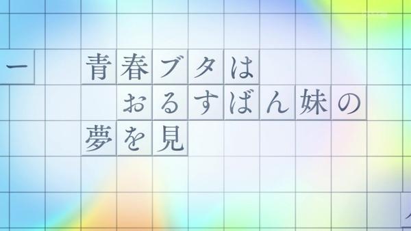 「青春ブタ野郎」11話感想 (14)