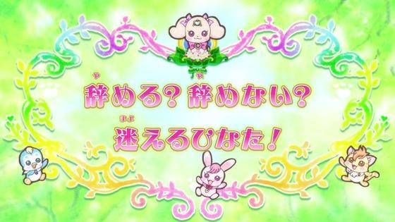 「ヒーリングっど♥プリキュア」13話感想 (4)