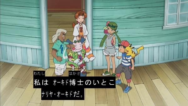 「ポケットモンスター サン&ムーン」 (29)
