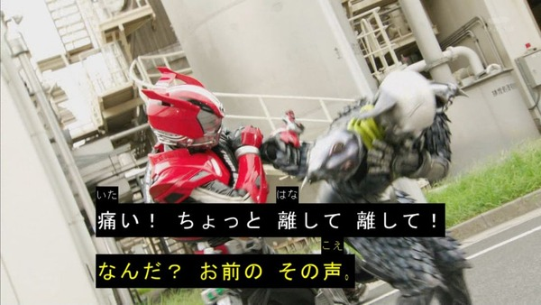 仮面ライダー (5)