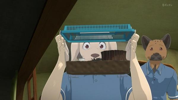 「BEASTARS ビースターズ」第11話 感想 画像   (5)