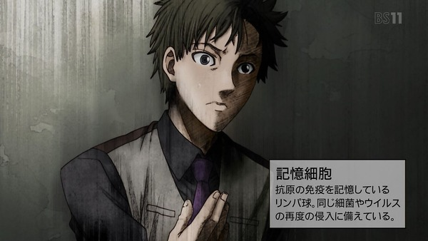 「はたらく細胞」5話感想 (13)