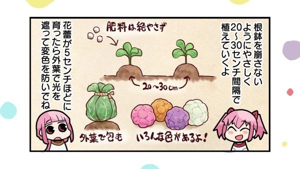 「まどか☆マギカ」12話 最終回感想 (119)