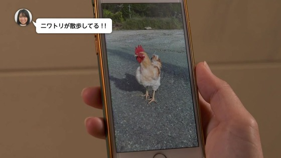ドラマ版「ゆるキャン△2」2期 4話感想 (26)