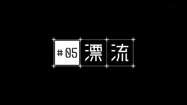 5 (5)