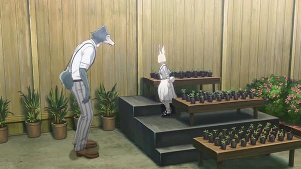 「BEASTARS(ビースターズ)」2話感想  (135)