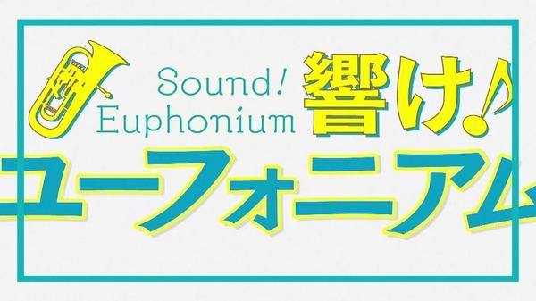 響け!ユーフォニアム (16)