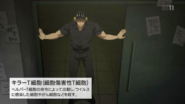 「はたらく細胞」7話感想 (14)