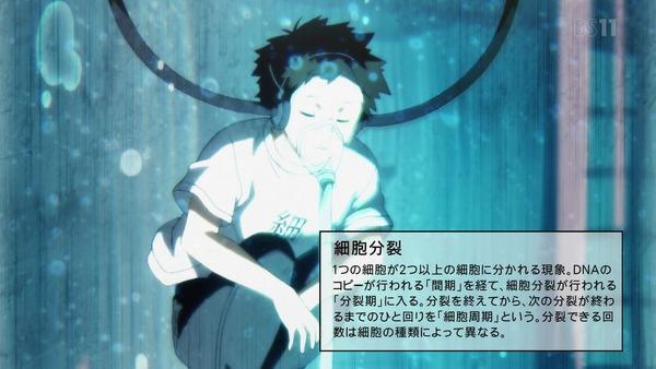 「はたらく細胞」特別編『風邪症候群』感想 (14)