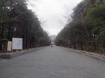 北海道神宮 (18)