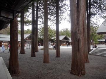 北海道神宮 (14)