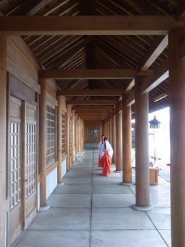 北海道神宮 (16)