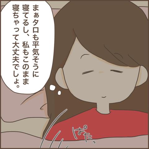 IMG_6651