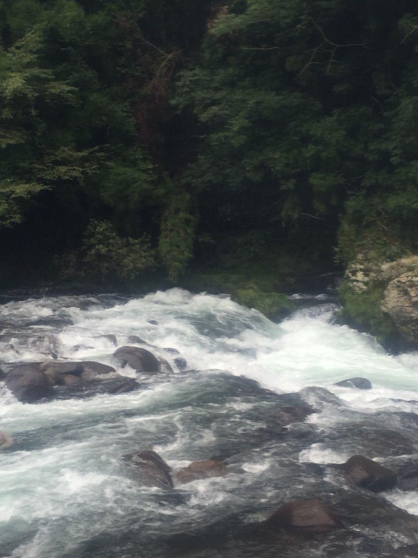亀尾島川 キビジマ