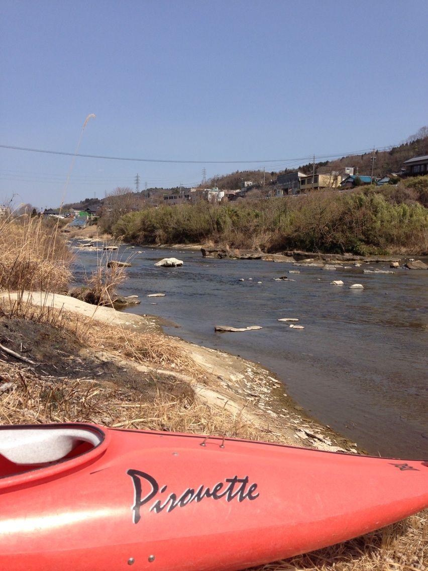 土岐川の生態