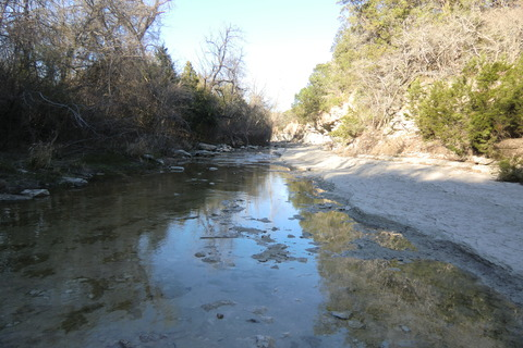 walnut creek metropolitan park 0305 015