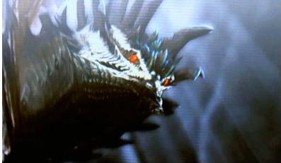 【モンハン】野良でアマデュラがぐるぐる巻く山の上で戦い続けるのってあり?