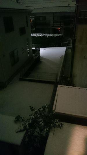 【MHX】この程度雪のうちに入らん…と言いたいが、山手線止まってるんだよなあ