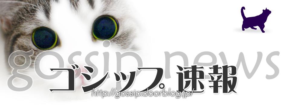 ゴシップ速報 ニュース 猫